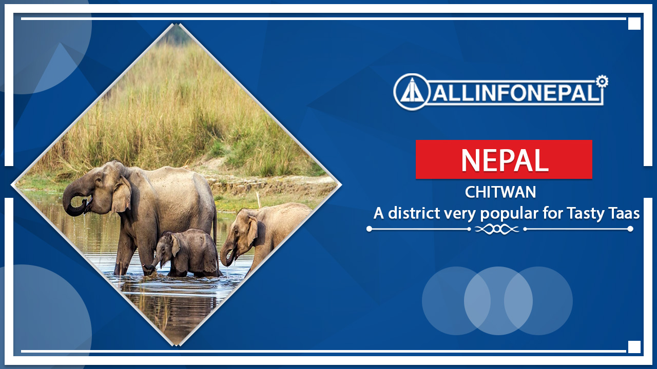 Chitwan || A district very popular for Tasty Taas