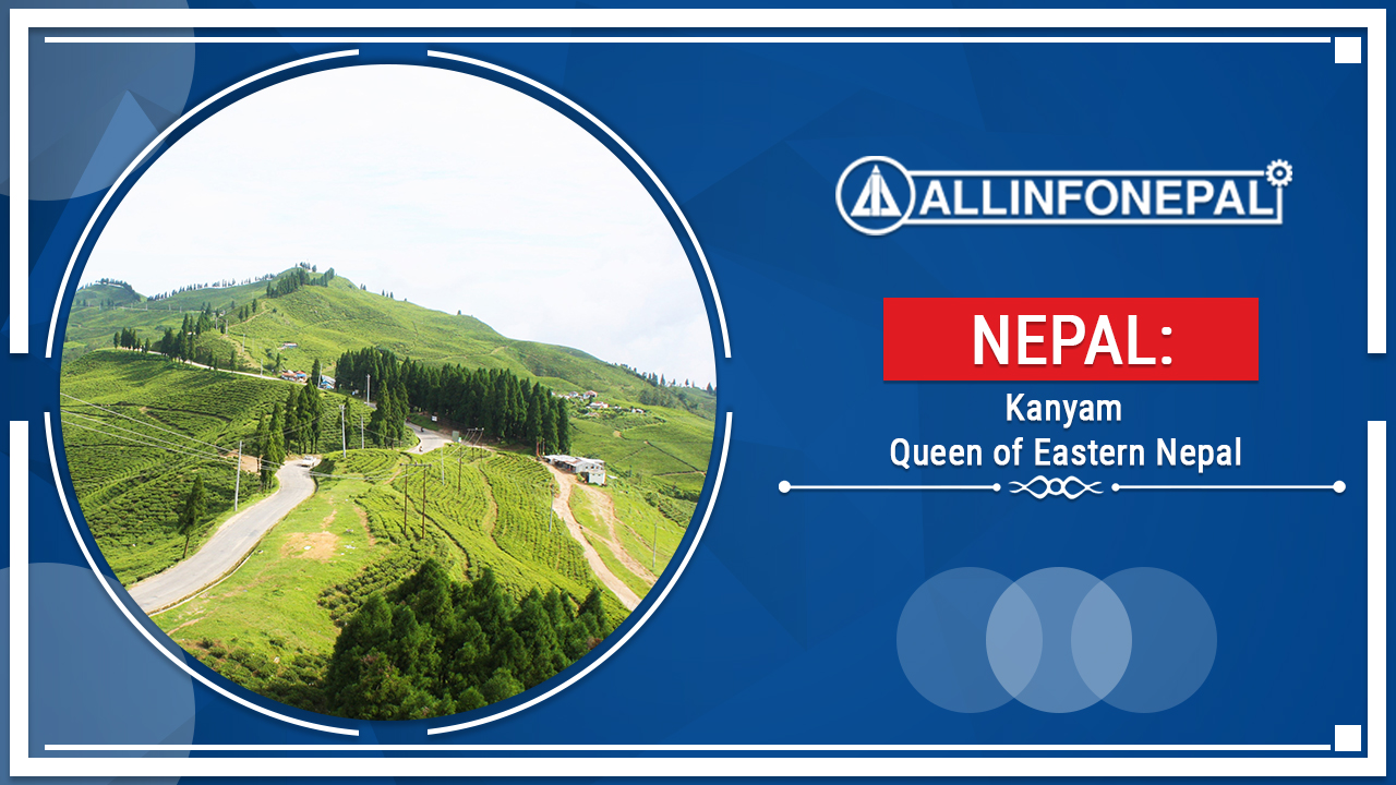Kanyam || Queen of Eastern Nepal || All info Nepal