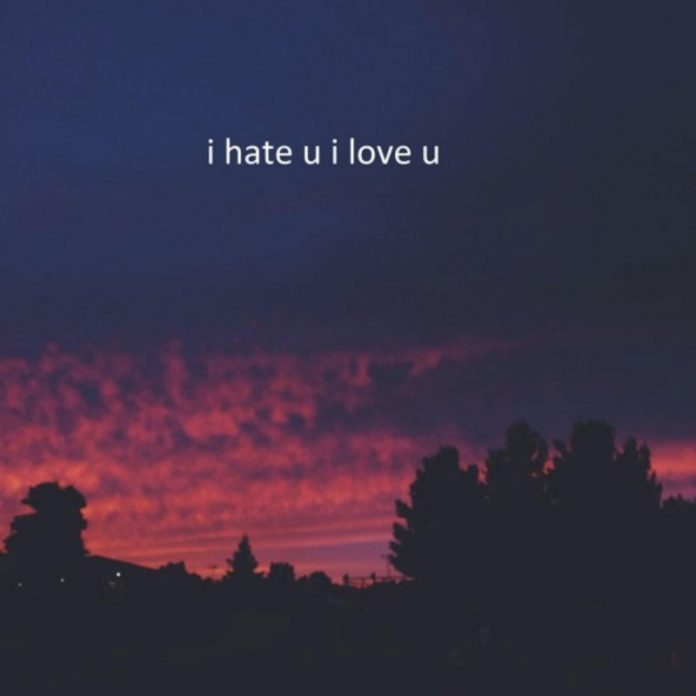 I HATE YOU I LOVE YOU Lyrics